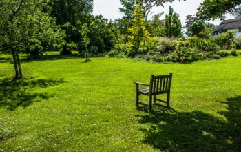 Naylors Lawn Care Services – Choose Best with Proper Research
